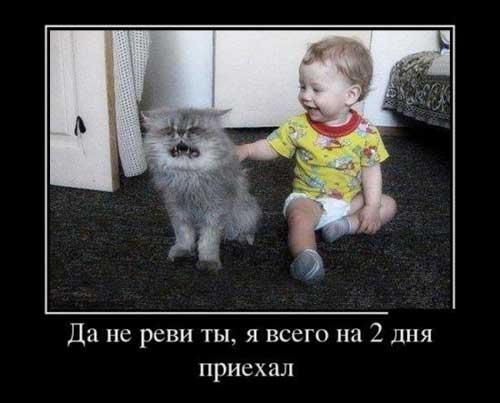 Смешные детские фото с надписями
