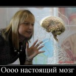 Статусы про мозг