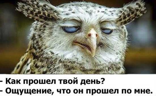 http://smehotisha.ru/wp-content/uploads/2016/04/pro_ustalost.jpg