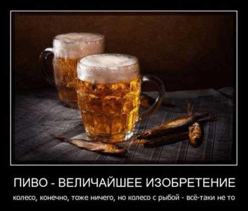 Шутки про пиво