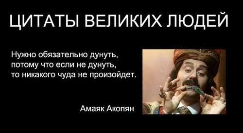 Смешные фото с цитатами