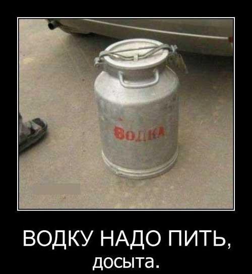 Смешные фото приколы про водку