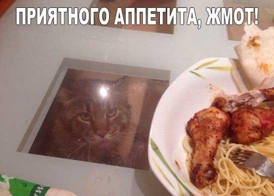Приятного аппетита - картинки с приколом