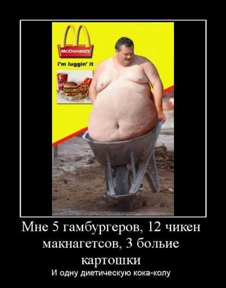Смешные картинки про диету и толстяков