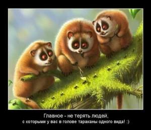 Веселые картинки про дружбу