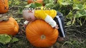 Веселые подписи к детским фотографиям