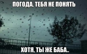 Смешные фразы про погоду