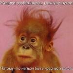 Смешные обезьянки — картинки с надписями