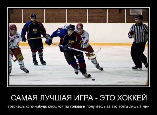 Веселые картинки про хоккей