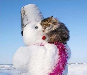 Смешные стихи про зиму